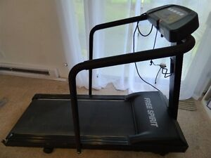 "Treadmill (Sears ""Free Spirit "")"