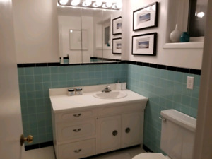 2 Bedroom Basement Wexford-Marydale