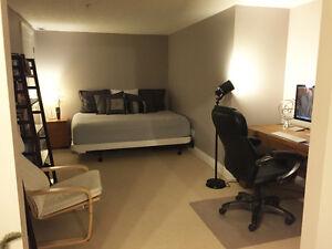 Executive 2 Bed or 1 Bed+Den Loft - 165 Duke St E - Nov 1st Kitchener / Waterloo Kitchener Area image 7