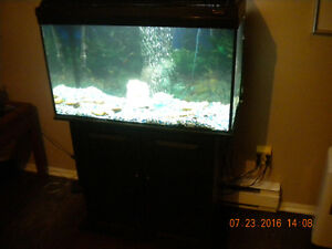 fish tank and case and plump 32x14x18