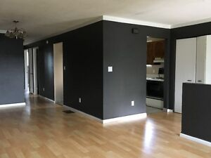 North end 2 semi houses for rent available Sep 1