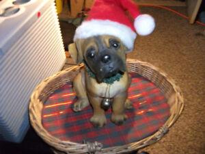 novelty Puppy in wicker Basket