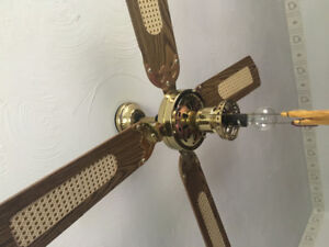 Looking to buy a ceiling fan like this or similar to this one .