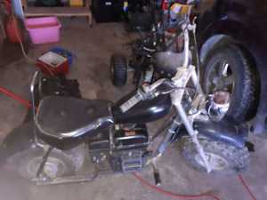 210 cc Baja Warrior mini bike