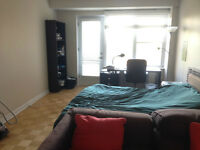 Spacious Bachelor Apartment in Downtown Montreal for rent