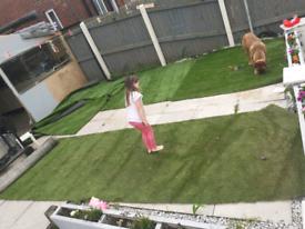 Artificial grass £50