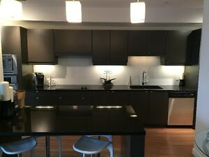 Fully Furnished 2 Bedroom Condo for Rent in East Red Deer,