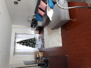 room for rent(sharing) near sheridan college
