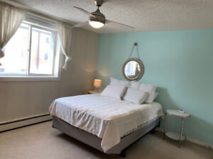 Executive Short Term Fully Furnished Rentals