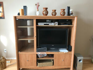 Entertainment unit $100