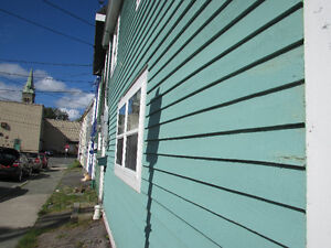 …HISTORIC DOWNTOWN ST. JOHN'S..17 ANGEL PLACE. St. John's Newfoundland image 6