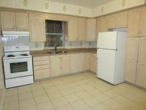 Dufferin/St.Clair...Main Level 1 Large Bedroom + Den For Rent!