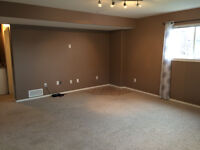 Daylight basement suite for rent
