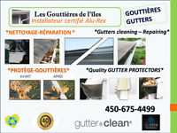 cleaning  reparation repair nettoyage gutter  gouttiere