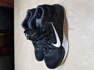 Nike Ascention Zoom Basketball Sneakers