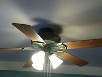 2 Matching High End Ceiling Fans & Light
