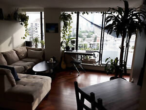 Beautiful Furnished Beach Highrise Apartment Oct.15-31 Downtown-West End Greater Vancouver Area image 5
