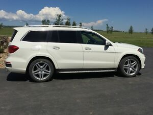 2013 Mercedes-Benz GL- 550 Fully Loaded