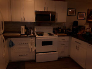 Newly renovated basement suite for rent. Sherwood Park