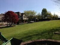 North Star Landscaping Inc.