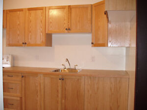 Renovated 2 Br 4plex with fenced private yard Available Sept1