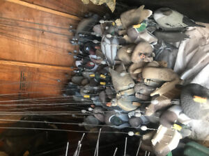 Waterfowl decoys and supplies