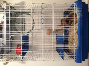 Pet Cage for Chinchilla/Rabbit/Ferret/Bird