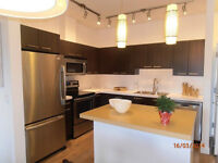 3 bed-room condo is available for short term rental