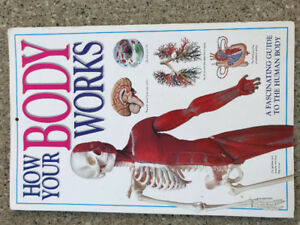 How Your Body Works used picture educational kids big book
