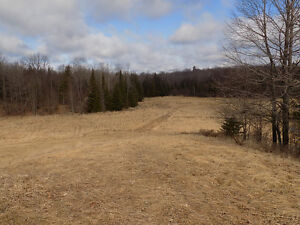 Vacant lot/land rolling countryside for your hobby farm/home
