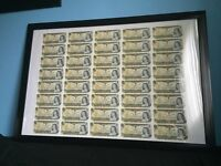 Canadian one dollar bills framed
