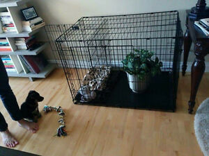 Large Dog Crate / Kennel / Cage