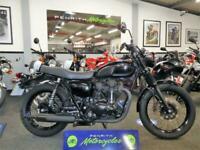 Kawasaki W800 (EJ 800 AFFA BLACK EDITION) at Penrith Motorcycles