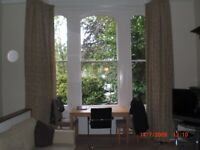 Spacious one bedroomed flat for rent