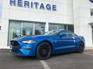 2019 Ford Mustang GT PERFORMANCE PACKAGE ! 5.0L V8 MOTOR ! REAR