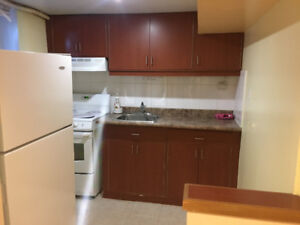 Fully renovated 1 bedroom basement apartment for rent