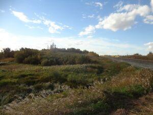 rawland for sale alberta