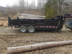 Dump trailer rental/rent/dumpster St Stephen/St Andrews /$150