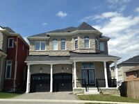 Stunning 4 Bed/4Bath Executive Home in Ajax (Audley & Rossland)