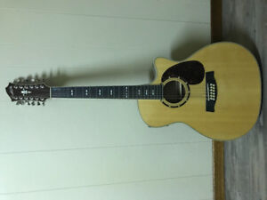 12 string acoustic/electric guitar