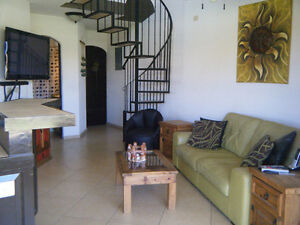 Condo For Rent in San Jose Del Cabo, Mexico