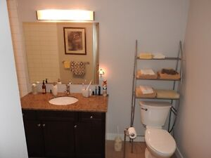 Beautiful 1+1 Suite for Rent at The Red Condo (Waterloo)
