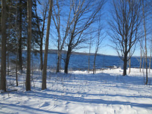Bark Lake Waterfront Lot!!
