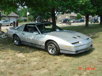 1984 firebird SHELL