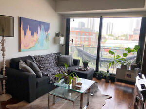 Luxury Condo JR 1 Bedroom - 6mth Sublease-Avail. Mid Aug/Sep 1st