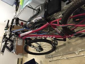 CCM Bike 24 Gear