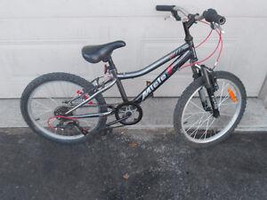 velo pour enfant Miele 20 pouces- Kid Miele bike 20 inches.