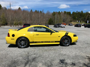 2000 Mustang GT Loaded with Aftermarket and Mint