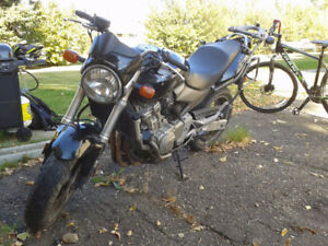Honda 599 Hornet (needs work)