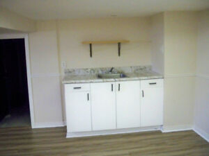 1+ 1 Very Clean Basement Apt with Separate Entrance